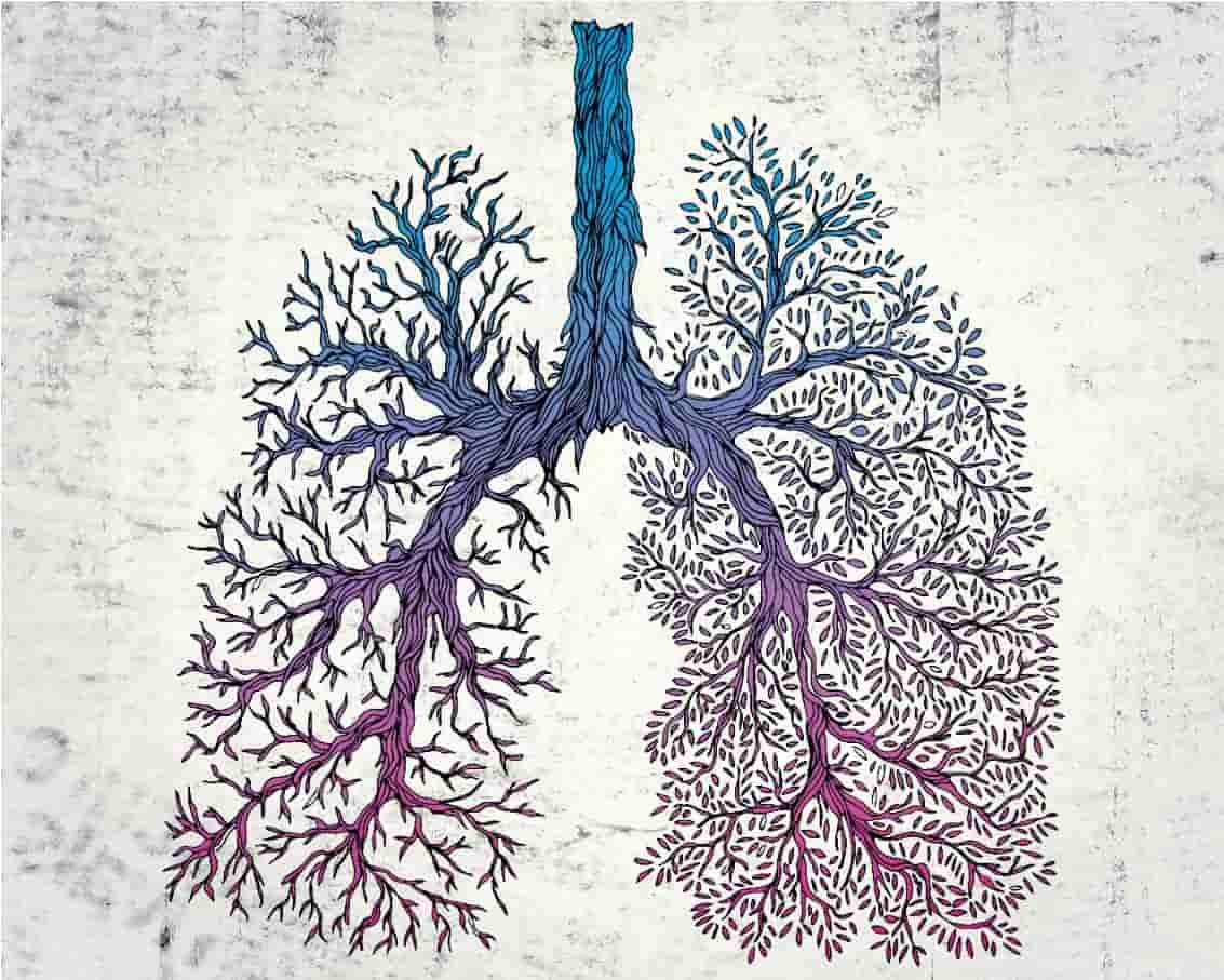 Breathe - indoor-a-class